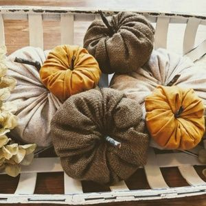 Other - Fall decor